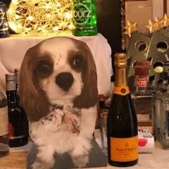 Lifesize pet cardboard cutouts, dog cutouts, pet cutouts, party props.