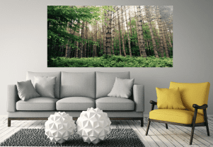 Personalised Wall Murals/Wall Art